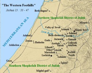 A map of the cities in Judah's western foothills district.